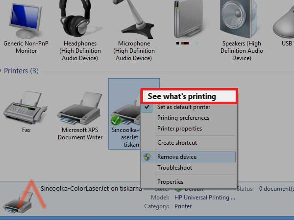 I cannot find some option in the Printing preferences.