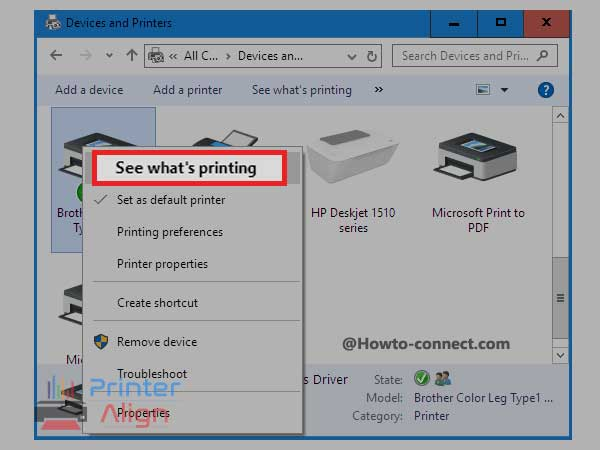 click on'See what's printing'
